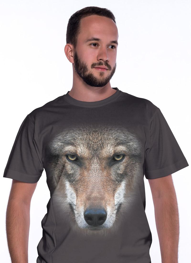 Vlk - Tulzo