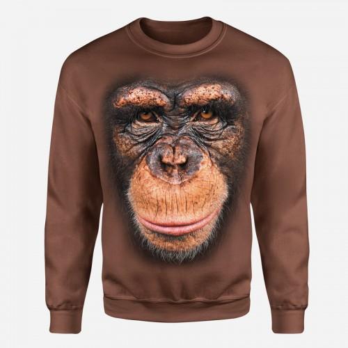 Šimpanz - Tulzo