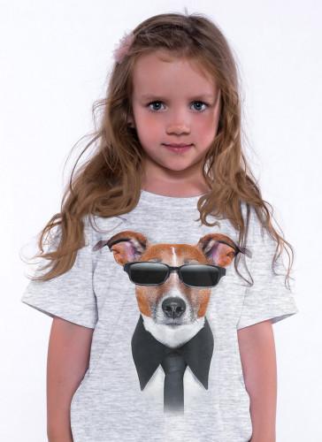 Pes v brýlích - Tulzo